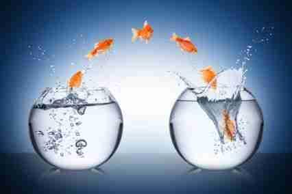 L'importance de bien gérer le changement lors d'une implantation d'un ERP pour PME